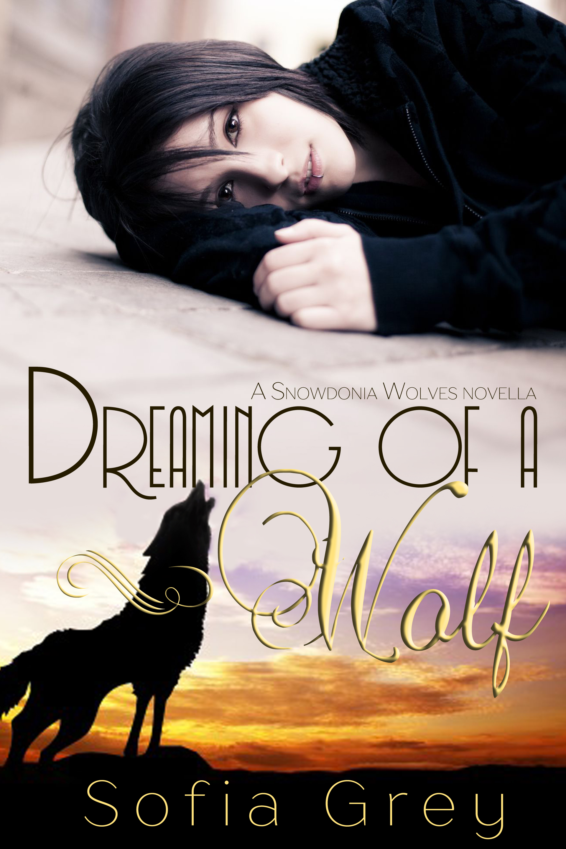 Dreaming of a wolf_01b (1)